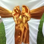 Gold Satin Sash hire gippsland
