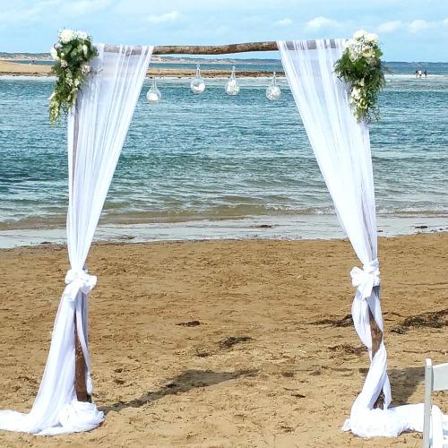 beach wedding arch