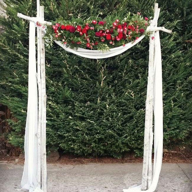 Silver Birch wedding arch