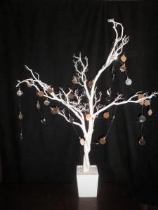 Wishing tree hire