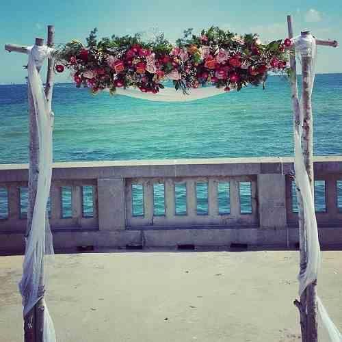 Silver Birch wedding backdrop