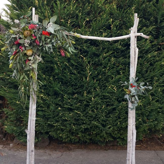 Birch wedding arch