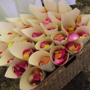 Wedding decorations confetti cones Melbourne