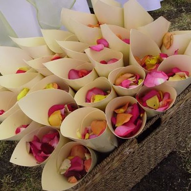 Wedding decorations wedding event hire melbourne wedding decorations confetti cones melbourne junglespirit Gallery